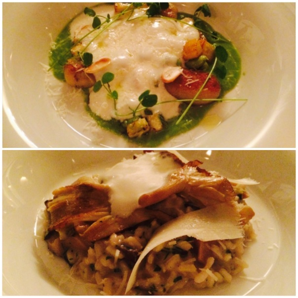Zucchini Gnocchi : Wild Mushroom Risotto with Truffle Oil & Parmesan