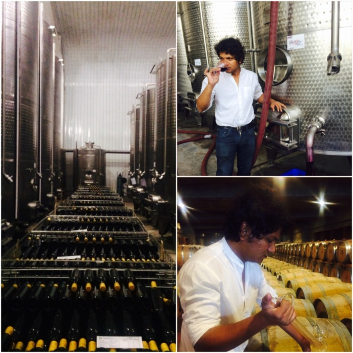 Vrushal Kedari, Assistant wine maker at Fratelli Wines, a graduate of oenology from Napa, whose passion for wine is matched by his knowledge.