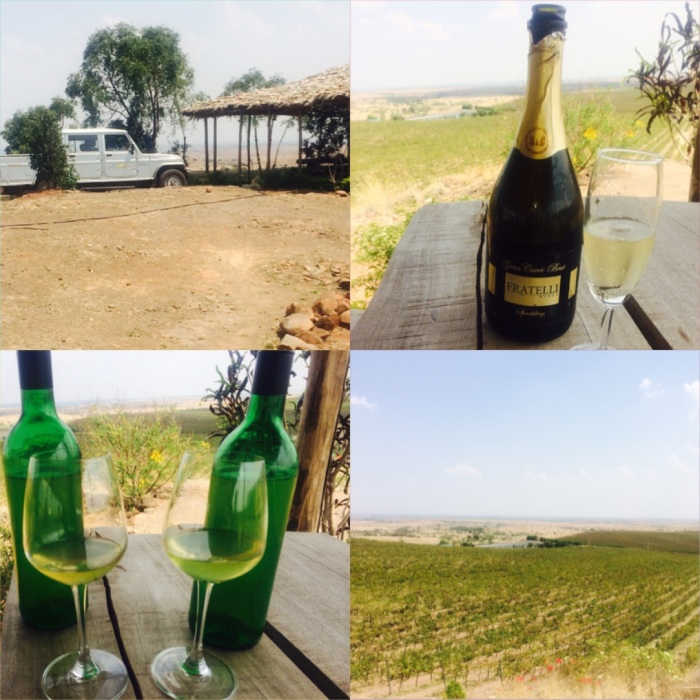 Wine tasting at Syrah Hill overlooking the vineyards at Garwad