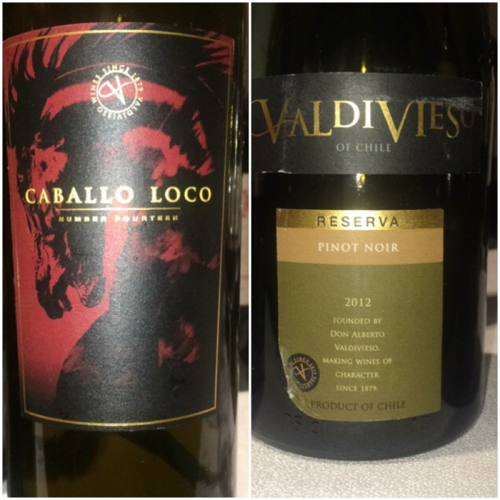 Valdivieso Wines from Chile