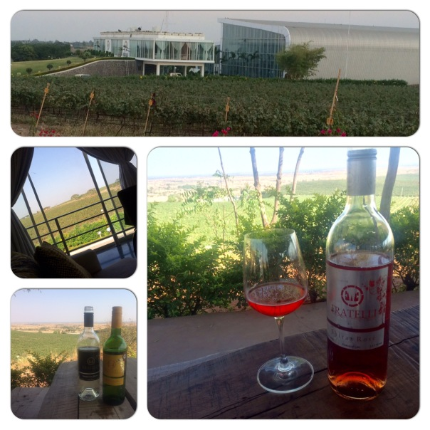 Fratelli Winery & Vineryards at Akluj, 170 kms from Pune Maharashtra.
