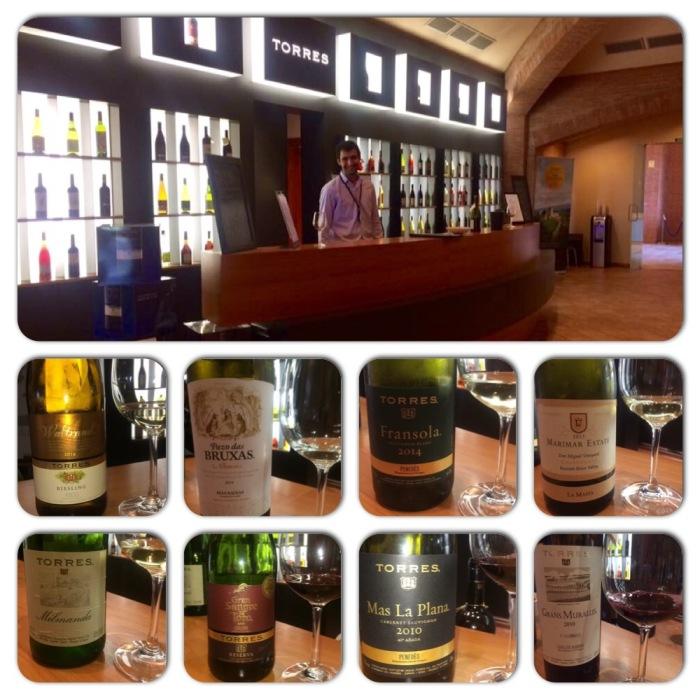 Tasting Room at Torres Winery