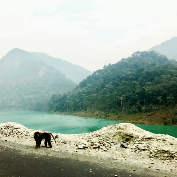 Most of the four hour drive from Bagdogra airport to Gangtok is along the Teesta river.