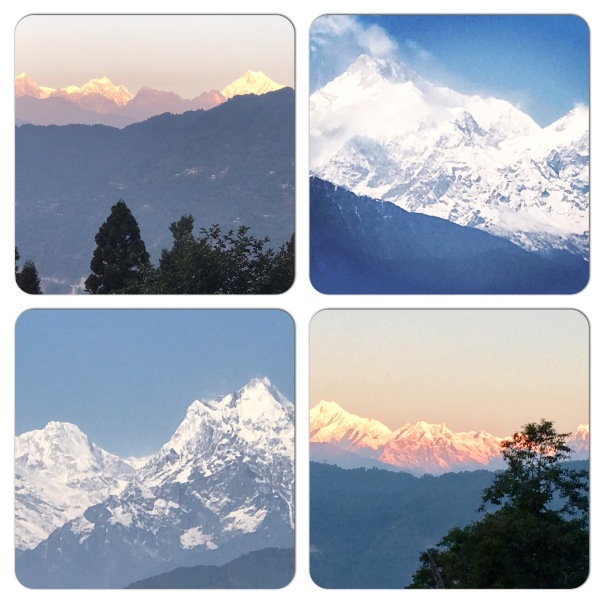 Breathtaking view of the Kanchenjunga Range from Raj Bhawan Road, Gangtok, Sikkim. All photographs in this blog taken by me.